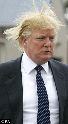 donald_trump_comb_over.jpg